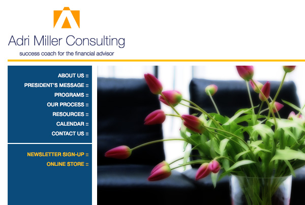 Adri Miller Consulting . Website