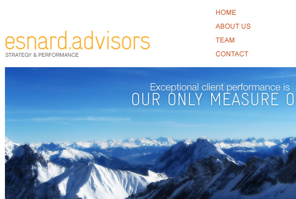 Esnard Advisors . Website